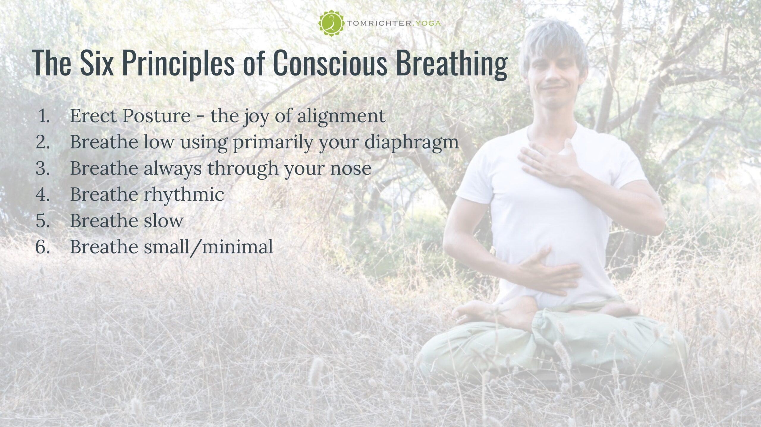Module 1 - Optimal Breathing Habits